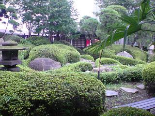 極らーめん櫻座本家 ガラス越しに見るお庭.JPG