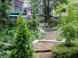 東大農学部 食堂から見える庭.JPG